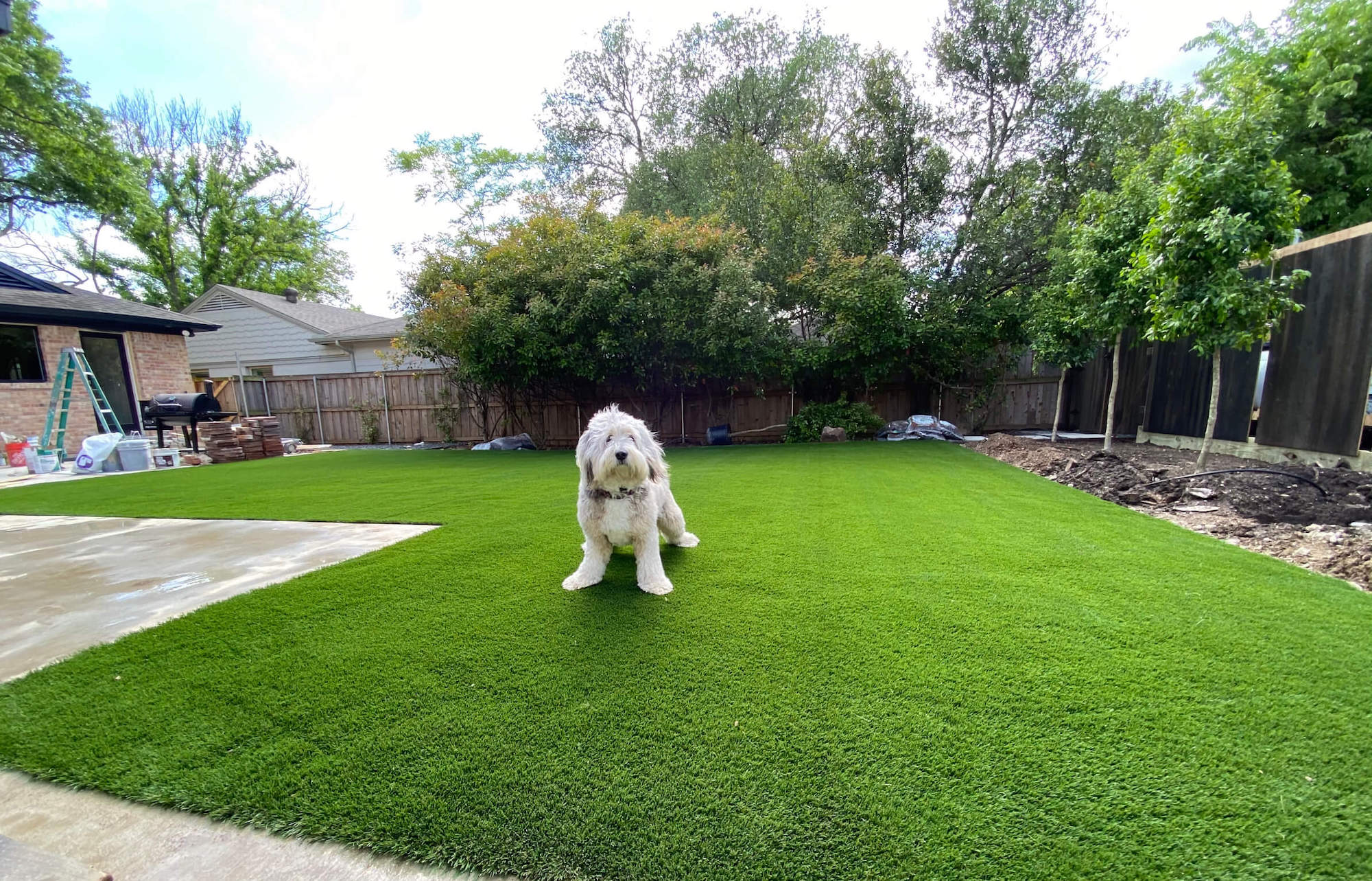 How Artificial Grass Can Save You Money